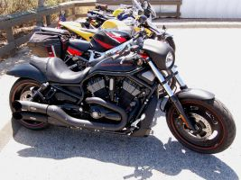 BLACK Harley Davidson NightRod by Partywave
