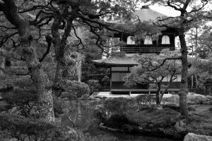 Japanese garden by Cebas1
