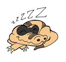 Sandile went to sleep by PlummyPress