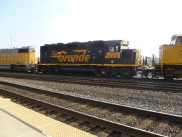 UP GP40-2 1342 by BNSF