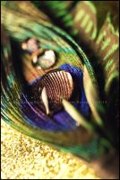 .Colorful Peacock. 2 by GrotesqueDarling13
