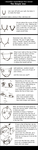 How to draw Anime Face tutoria by TheJennyPill