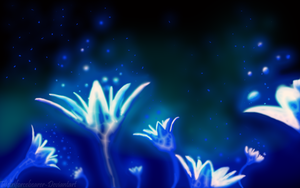 Flower Concept- Nightfalls Desire by Digital-Quill-Studio