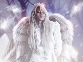 Angel feathers by Letomouse