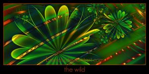 the wild by Brenciu