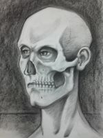 Figure Drawing - Face/skull by J-CHANT