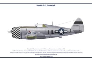 P-47 USAAF 83rd FS 1 by WS-Clave