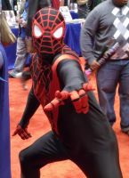 Ultimate Spider-Man @ C2E2 2012 by MonkeySquadOne