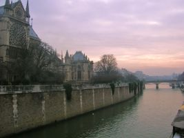 Notre Dame on the river by rakeru-kitsuki