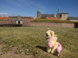 Fluttershy at Kronborg by CarolusrexI