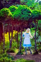 Alice in Wonderland 3 by GreatQueenLina