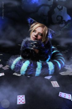 Mysterious Cheshire Cat by TimmyFrost