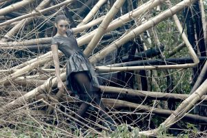 Grays and Bamboos by VethBlack