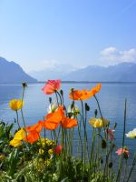 switzerland by cheah77