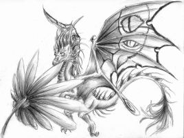 Butterfly Dragon by Luxray-Insanity