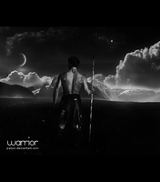 Warrior by PacioR