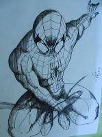 The Amazing Spider Man by boboieh