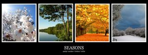Seasons :: Wide by DragonX141