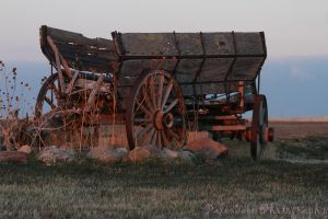 Our Old Wagon by Kaptive8