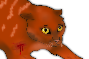 Cats - Realistic Leafpool by iCaitlynn