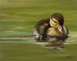 Duckling I 2007 Duck series by HOULY1970