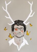 will graham by llegolas