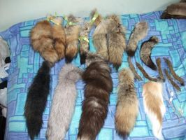 Tail collection by EternalEmporium