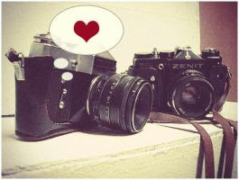Zenit love by xrenorx