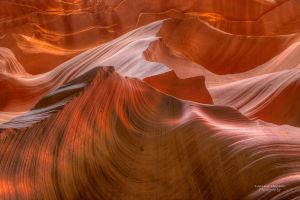 Antelope Wave by LeashaHooker