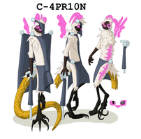 C4PR10N Character Info by Se05239