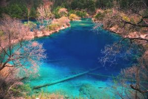 The Blue Lagoon by Mikewen