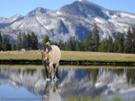 .:deep into the mountain sound:. by Streamwhisker