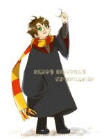 harry and Golden Snitch by dannysora