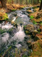 Flowing Stream by LilArtist23