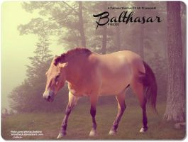 Balthasar by JuneButterfly-stock