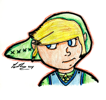 Playful Link by chelano