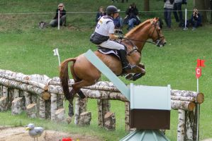 3DE Cross Country Water Obstacle Series XV/14 by LuDa-Stock