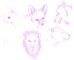 Various Animal Sketches by Ithfifi