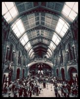 Natural History Museum by Dimitri86