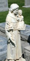 Mount Olivet Cemetery Saint Anthony 46 by Falln-Stock