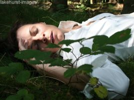 Sleeping beauty in the woods by lakehurst-images