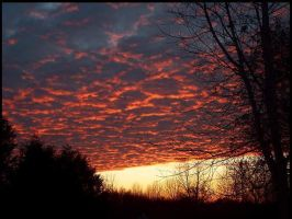 Red Sky at Night by BeckyMarie73