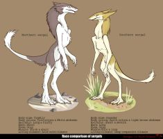 Sergal by PaTheFox