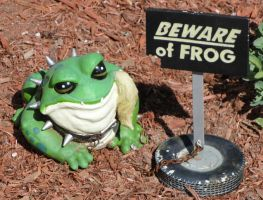 Beware of...Frog? by RollingTomorrow