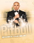 Pitbull by Aminebjd