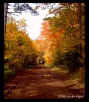 Old Autumn Road by Jenna-Rose