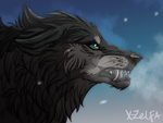 Wolf_sketch by X-Zelfa