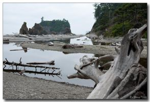 Ruby Beach by ricmerry
