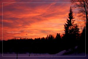 winter sunset postcard by Shadows-in-Twilight