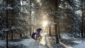 Before Winter Wraps Up by Bryal